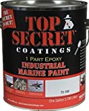#10: Silicone Epoxy Paint (Gallon, 309MT Fine Wine - Gloss Finish)
