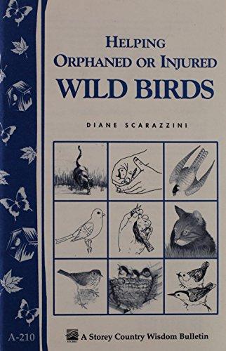 Workman Publishing Helping Orphaned or Injured Birds