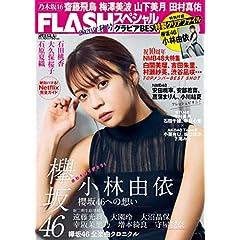 FLASH スペシャル 表紙画像