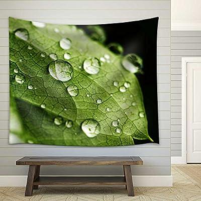 Astonishing Artisanship, Original Creation, Green Leaf and Water Drops Detail Fabric Wall