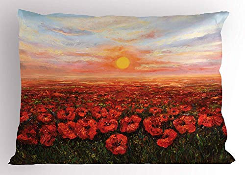 (K0k2t0 Flower Pillow Sham, Wild Opium Poppy with Petals Field in Front of Sunset Artistic Picture, Decorative Standard Queen Size Printed Pillowcase, 30 X 20 inches, Light Blue Green Red)