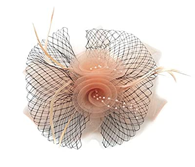 Women Fascinator Hair Clip Headband Feather Flower Veil Mesh Cocktail Tea Party