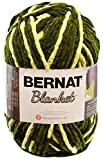 Bernat Blanket Yarn, 10.5 Ounce, Gathering Moss, Single Ball
