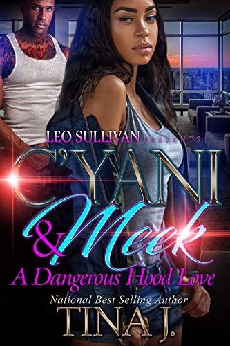 C'Yani and Meek : A Dangerous Hood Love