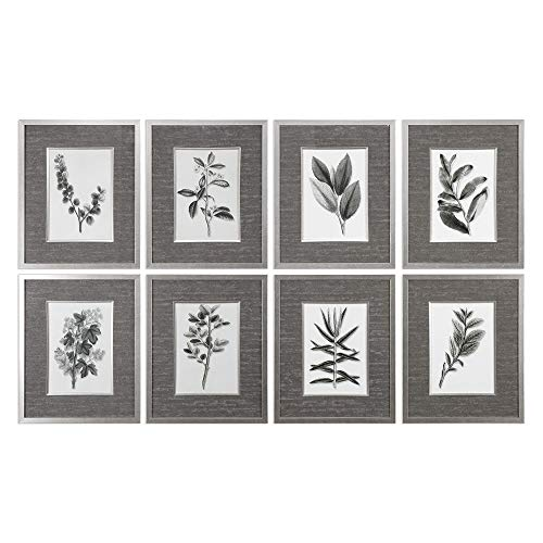 - Uttermost Set of 8 Sepia Grey Leaves Prints