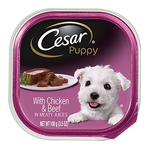 CESAR Canine Cuisine Puppy With Chicken and Beef in Meaty Juices Puppy Food Trays 3.5 Ounce (Pack of 24)