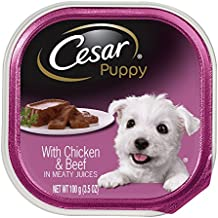 Cesar Canine Cuisine Puppy Wet Food With Chicken and Beef in Meaty Juices, 3.5 Ounce Trays (Pack of 24)