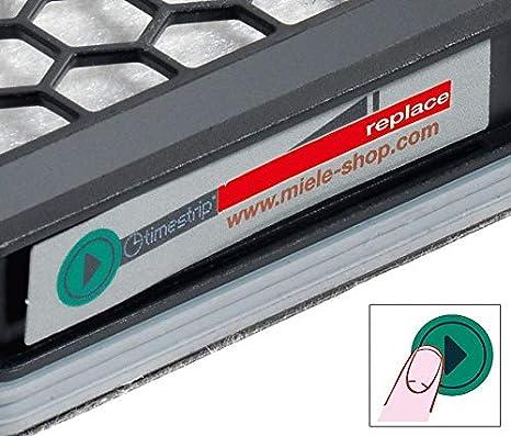 Filtre HEPA #s4/_Taille 10 Sacs daspirateur Miele S5361-CH BIG CAT/&DOG S 5361
