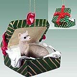 Ferret Gift Box Christmas Ornament - DELIGHTFUL!