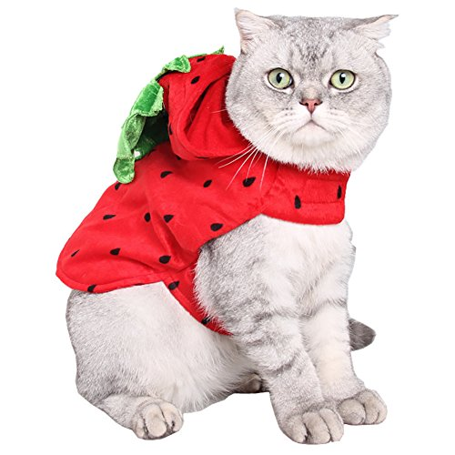 Yarssir So Cute Dog Cat Costume, Pet Apparel Puppy Kitten Strawberry Hooded Clothes Halloween Christmas New Year…
