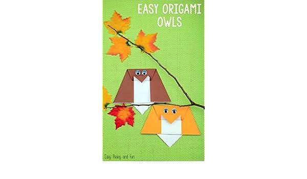 Easy Origami Owls Diy Many Easy Diy Origami Owls Kindle Edition