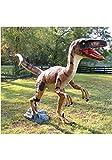 Life Size Velociraptor Dinosaur Statue Theme Park Mini Golf or Home Sculpture