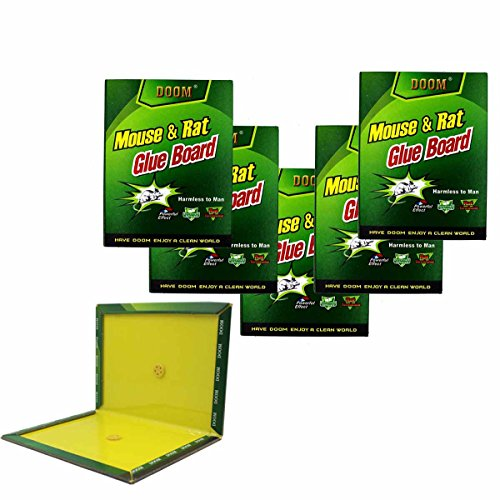 Eiito mouse glue board 5 pack, rat glue traps large big sticky rat traps pads