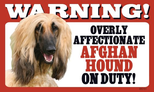 Warning Overly Affectionate Afghan Hound On Duty