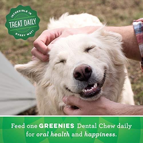 GREENIES Original Large Dog Natural Dental Treats