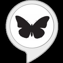 Jahres Schmetterling