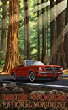 Northwest Art Mall Muir Woods National Monument Mustang in Trees Artwork by Paul A. Lanquist, 11-Inch by 17-Inch