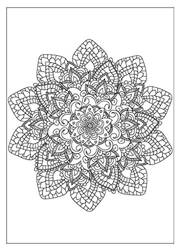 Adult Coloring Greeting Cards (Set of 6, 3 Designs) with Envelopes (2 Round Mandala, 2 Daisy, 2 (Adult Greeting Card)