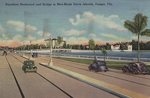 Tampa, FL - View of Bayshore Blvd, Bridge, Davis Is. (12x18 Art Print, Wall Decor Travel - Lantern Bayshore Wall