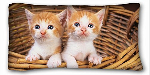 Decorative King Pillow Case Animals cat cat basket two Kittens red white 20