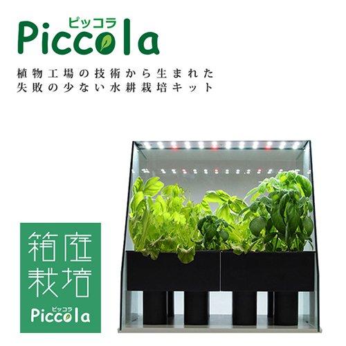 水耕栽培キット ピッコラ
