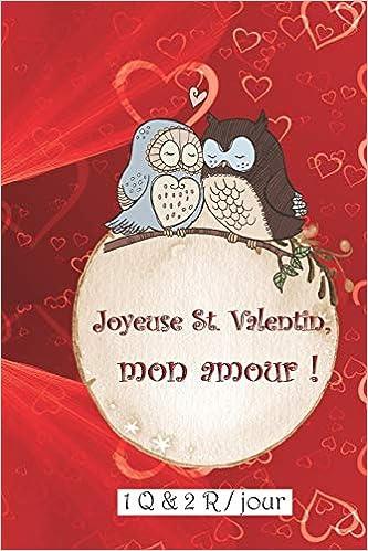 Amazon Joyeuse St Valentin Mon Amour 1 Q 2 R Par Jour Ce Cadeau Pour La St Valentin Contient 366 Questions Sur La Relation Les Desirs Les Envies Les Attends