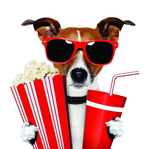 Design with Vinyl Color 666B-333 As Seen Decor Item Movie Theater Dog Soda Popcorn and Sunglasses Boy Girl Kid Children Picture Art Sticker Home Bedroom, 30-Inch x - Sunglasses Soda
