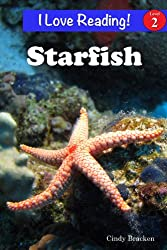 Starfish (An
