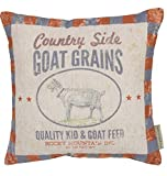 Primitives by Kathy Feed-Inspired Throw Pillow, 12'', Multicolor