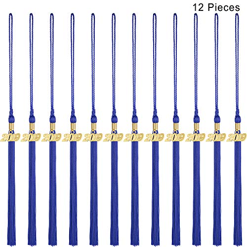 Zonon 12 Pieces Graduation Tassel Graduation Cap Tassel with Gold 2019 Year Charm Graduation Tassel Decorations for Graduation Party Supplies (Navy Blue)]()