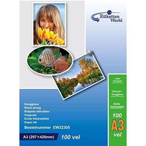 EtikettenWorld – 100 hojas papel fotográfico A3 Premium brillante 260 g