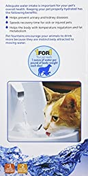 PetSafe Drinkwell Original Pet Fountain