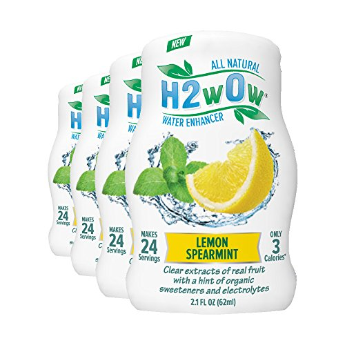 H2wOw Water Enhancer Drops-Lemon Spearmint Flavored Water 4 pack