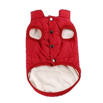 BAONUAN Ropa para Mascotas Ropa para Perros De Gran Tamaño para Perros Grandes Golden Retriever Winter Pet Hoodie Sportswear: Amazon.es: Productos para ...