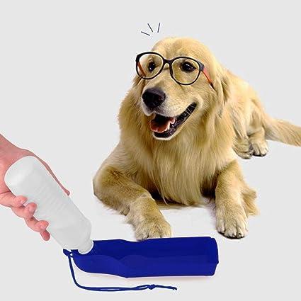 Zackonline Comedero portátil para botella de agua con cuenco de plástico para perro, 500 ml