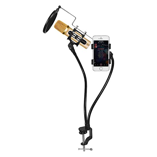3 opinioni per Xiaokoa professionale microfono portatile palmare microfono karaoke mini