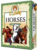 Educational Trivia Card Game - Professor Noggin's Horses