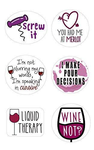 (Wine Markers | Stickers for Wine Glasses | Set of 12 Static Cling, REUSABLE Stickers | Funny Wine Party Supplies | Great Alternative to Wine Charms)