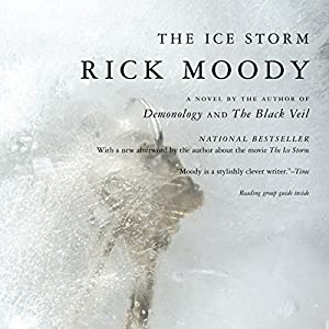 The Ice Storm Audiobook