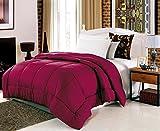 JessyHome Box Pattern Stitch Quilted Comforter Duvet Insert (Burgundy) King