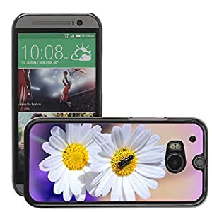 Hot Style Cell Phone PC Hard Case Cover // M00113766 Daisies Flowers Garden Flora Nature // HTC One M8