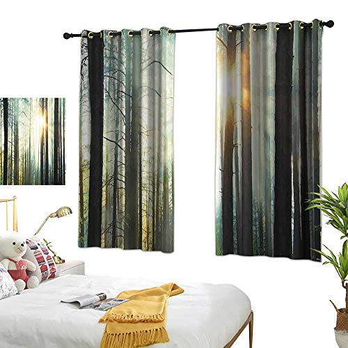 (Country Blackout Curtains Fairy Foggy Forest Mist in The Woods Enchanted Wilderness with Sunbeams Image 72