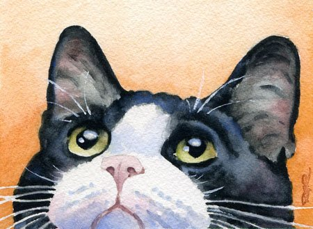 Tuxedo Cat Art - Tuxedo Cat Art Print by Watercolor Artist DJ Rogers