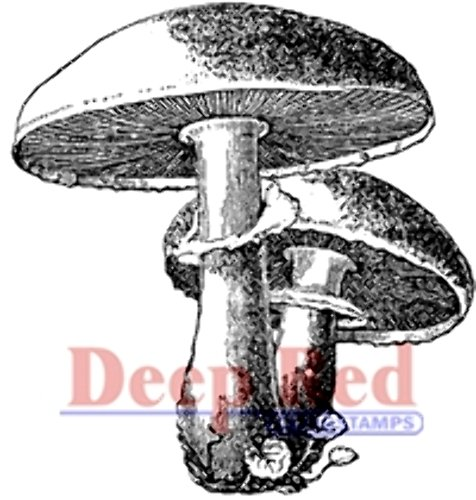Rubber Mushroom - Deep Red Stamps Mushrooms Rubber Stamp