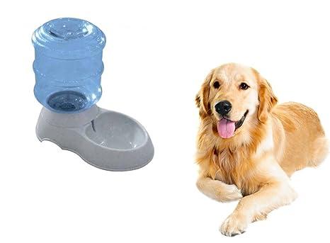Top SHOP dispensador agua cuenco para animales perros y gatos 3,5 Lt