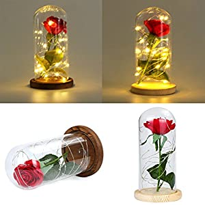 EnjoCho 2 Style LED Gold Rose in Glass Dome Beauty and The Beast Red Rose Decorative Flowers Wreaths for Valentine Gift Mother Day Christmas Gifts 89
