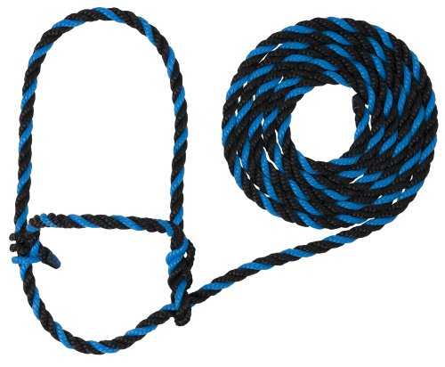 Blue Halter (Weaver Leather Rope Cow Halter, Hurricane Blue/Black)