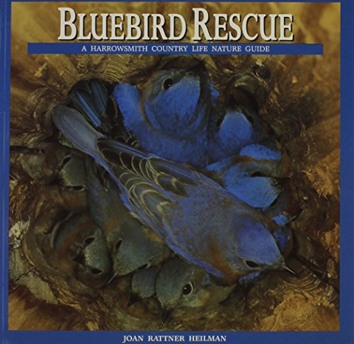 (Bluebird Rescue: Country Life Nature Guide (Harrowsmith Country Life Nature Guide))