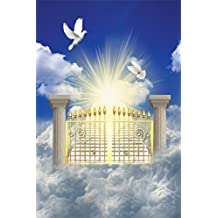 OFILA Heaven Gate Backdrop 3x5ft Stairway Doves Holy Lights Background Blue Sky Jesus Christian Holy Spirits Religious Belief Church Event Background God Father Lord Interior Wallpaper Photos Video