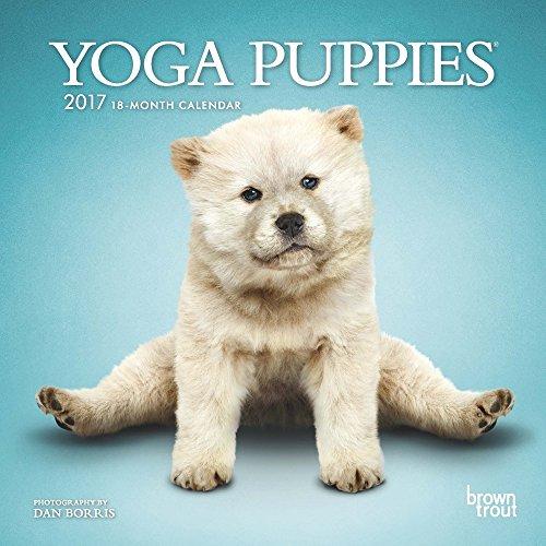 Yoga Puppies 2017 Small Calendar product image